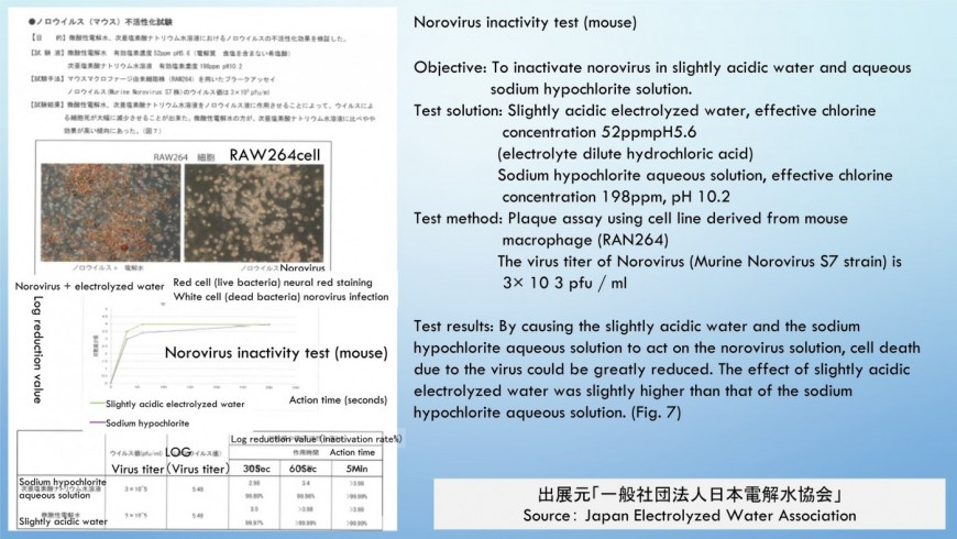 Norovirus inactivity test (mouse)hypochlorous acid water   Effective chlorine content ratio in water